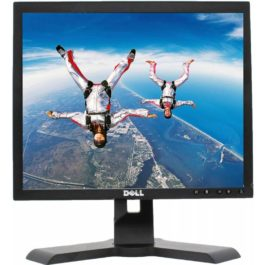 Monitor Dell P170SP TFT 17